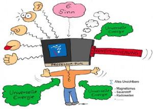 Sinnesorgane mit Prozessor