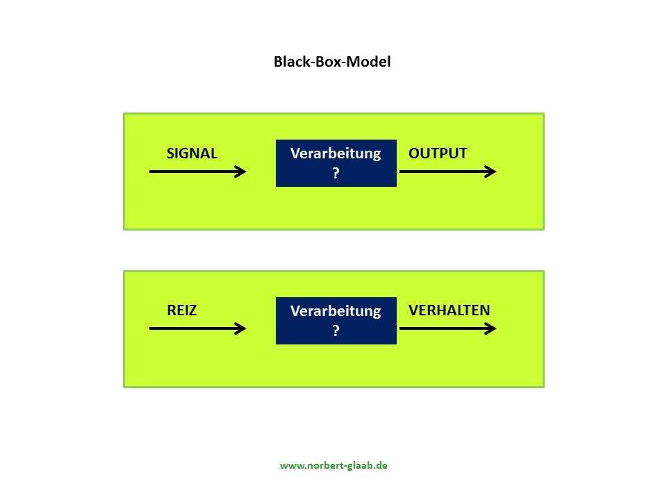 black-box-model